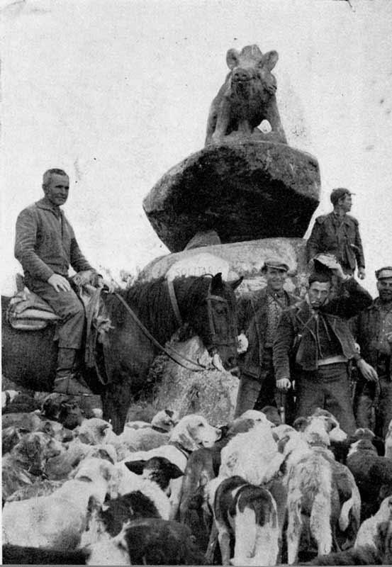 monumento-al-jabali,-sierra-de-Andujar