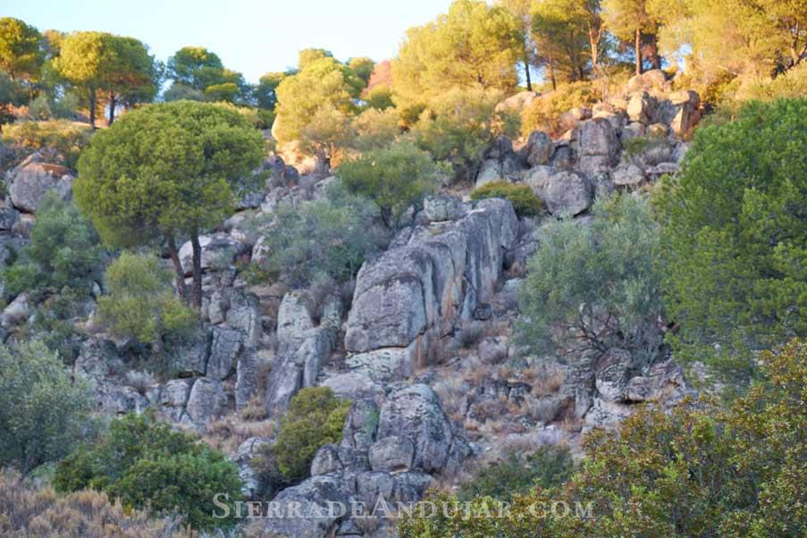 bolos-graniticos sierra de andujar