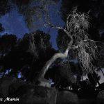 Cielo-estrellas-Sierra-de-Andujar