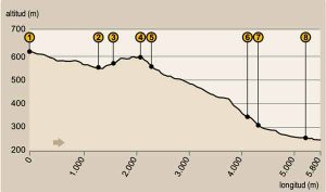 Perfil-ruta-SAN-GINES-LUGAR-NUEVO
