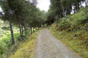 Ruta-sendero-Del-Bronce-Sierra-de-Andujar