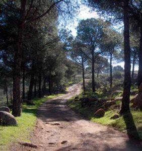camino-del-Bronce-Ruta-Sierra-de-Andujar