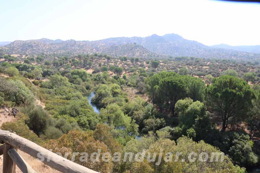 sierra-de-andujar-63 ruta encinarejo