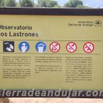 sierra-de-andujar-71 ruta encinarejo