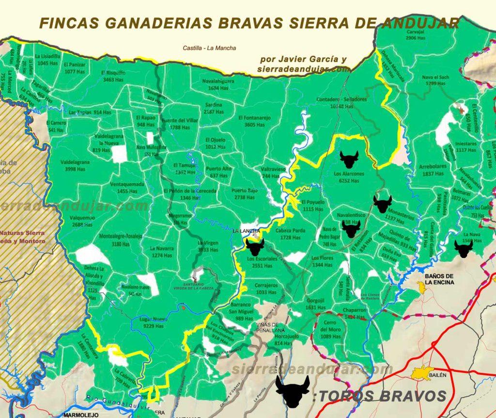 fincas-ganaderias-bravas-sierra-de-andujar