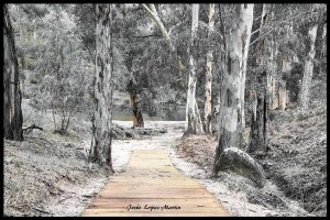 pantano-Parque-natural-Sierra-de-Andujar-