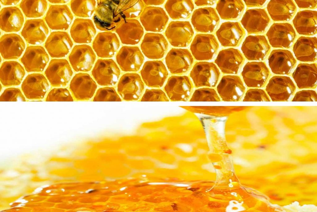 miel-natural