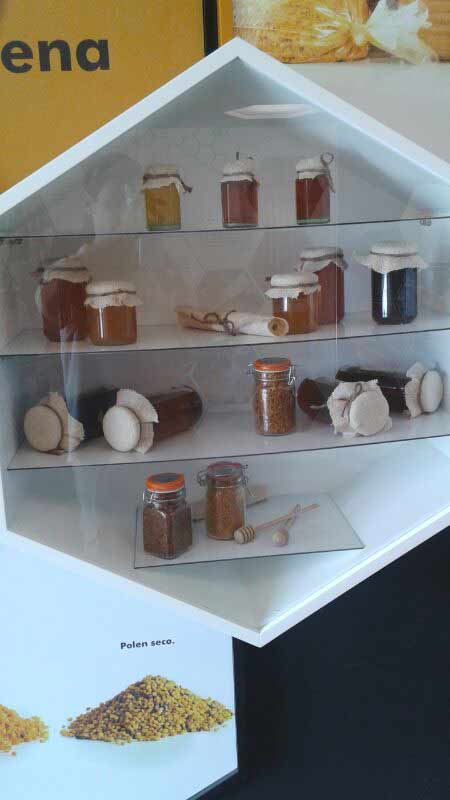 museo botes con miel