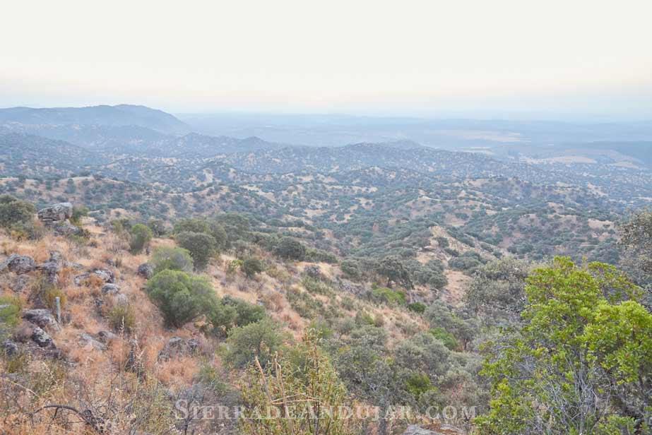 Sierra-de-Andujar-paisaje