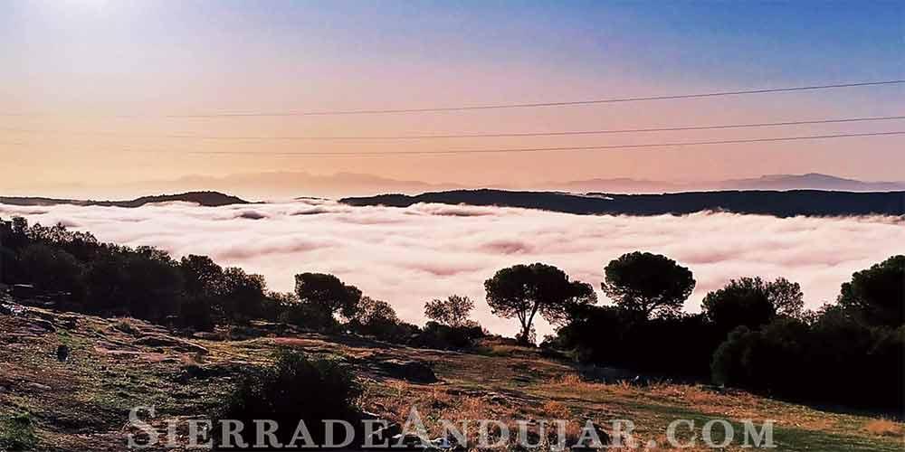 niebla en sierra de andujar